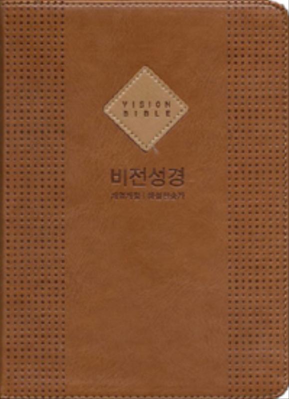 비전성경(슬림)NKR개역개정/해설새찬송-브라운