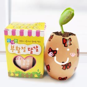썬앤문2000-부활절달걀화분